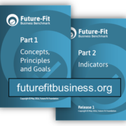 Future-Fit Business Benchmark, Release 1